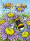 "Журнал ""Музична школа"" Випуск 104  Флейта для 4 класу"