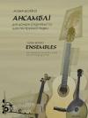 """Аліна Бойко """"Ансамблі для домри (скрипки) та шестиструнної гітари"""""""